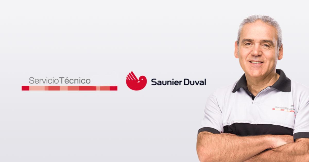 Técnico Saunier Duval Vitoria